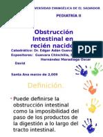 obstruccion intestinal en recien nacidos