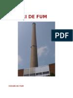 COSURI DE FUM.docx