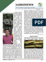 Sidamo News 37 - aprile 2015