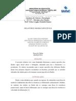 Relatório 1 - Mecflu pronto.docx
