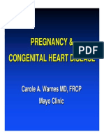 ACHA Pregnancy Webinar