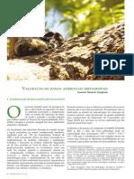 Valoração de Danos Ambientais Irreversíveis_Steigleder