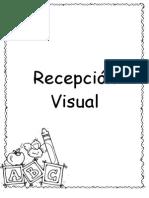 Guía Del Desarrollo de 5 a 5,6 Años Visual Fial