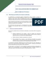 Cap 06 SBX Evaluacion de Impactos Preliminar 2011 ABC