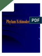 Echinodermata-1