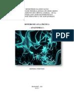 Apostila de Anatomia I - NERVOSO - Neuroanatomia