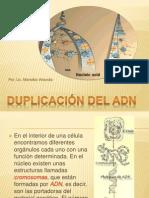 Duplicacion de ADN