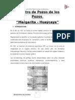 Registro de Pozos de Los Pozos Margarita y Huaycaya Informe