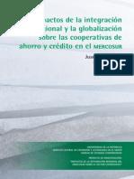 Juan Pablo Martí - Impacto de la integración regional y la globalización sobre las cooperativas de ahorro y crédito en el MERCOSUR