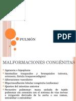 PulmónNotumoral