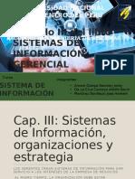 CAP. III - Sistemas de Información, Organizaciones y Estrategia