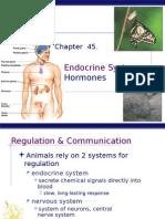 ch 45 endocrine system ap bio
