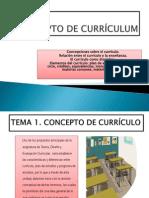 Concepto de Currículum(1) (1)