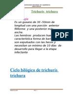 TRABAJO DE PARASITOLOGIA.docx