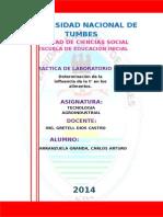 Informe de Tec. Agroindustrial