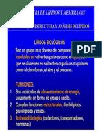 Estructura y Analisis de Lípidos