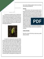 VD Mar 15 Wk 4.pdf