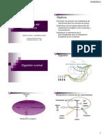 Integración Del Metabolismo GJ VJMC- 2014