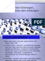 Hormon Esterogen, Progesteron Dan Androgen