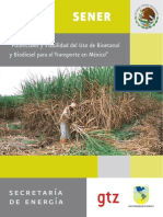 SENER BID GTZ Biocombustibles en Mexico Resumen Ejecutivo