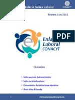 EnlaceLaboral DisciplinaTecnologia Febrero 2015 022015