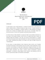 2007 Relatório Técnico Cidade Educativa Virgem da Lapa-MG (ABR-JUN07)