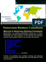 Numerouno Business Consultants ..
