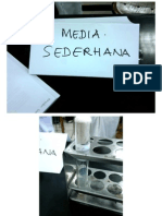 Microbiology 1 Praktikum