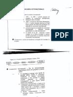 Comunicare International A Vasile Puscas