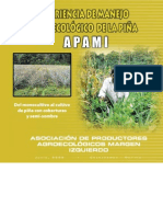 Piña Agroecologica