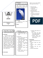 Leaflet Flu Burung