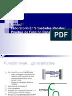 2.b. Enfermedades Renales