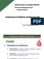 Aula 7 - Sistema Cardiovascular