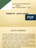 Unidad 11 - Juicio Común