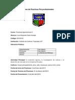 INFORME DE PRACTICAS LUIS SAIRE QUISPE LISTO 1.pdf