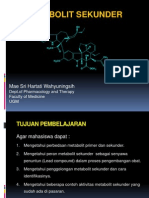 3. Metabolit Sekunder