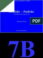 Eduvis - Modulo Padrao 7B