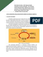 Roteiro de aula prática, genética