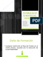 estimulacinmatricialreactiva-120529232201-phpapp01