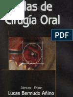 Atlas de Cirugia Oral - Bermudo
