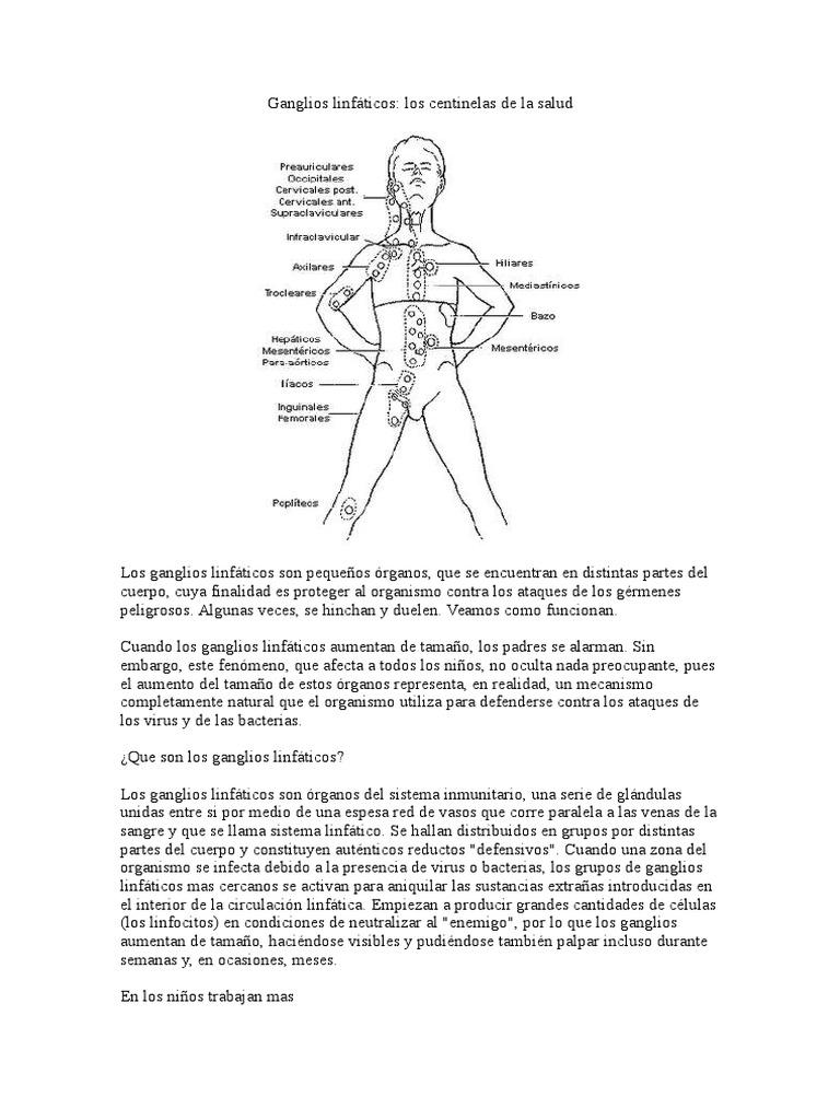 Único Ganglios Linfáticos Mapa Del Cuerpo Regalo - Imágenes de ...