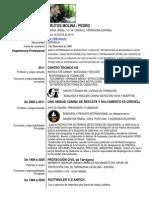 CVPERE (1).pdf