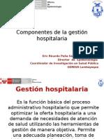 Componentes de La Gestión Hospitalaria