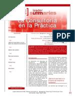 La Consultoria en La Practica LIBRO RESUMIDO