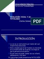 Evolucion Vocal y Sus Patologias
