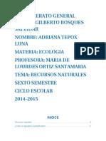 Ecología (Recursos Naturales)