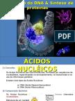 Biologia Molecular - Ácidos Nucleicos