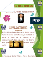 Etapas Del Duelo Dr Alfonso Reyes Zubiriaaa