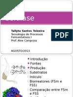 Celulase Tallyta Teixeira Ok