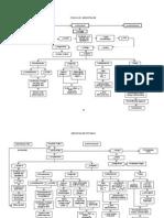FISIOLOGI MENOPAUSE + PATHWAY